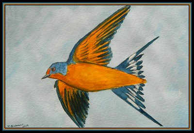 1-Barn Swallow, 6x8, watercolor, pencil & ink, oct 21, 2019.