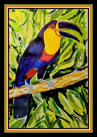 1-Channel-billed Toucan, Ramphastos vitellinus, Amazonia. 6x9, watercolor & ink, feb 7, 2019.