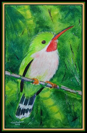 1-Broad-Billed Tody, Todus subulatus, Dominican Republic. 140x215mm, watercolor, acrylic & ink, oct 9, 2018.