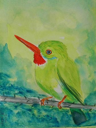 Jamaican Tody, 4x6, watercolor, aug 15, 2016.