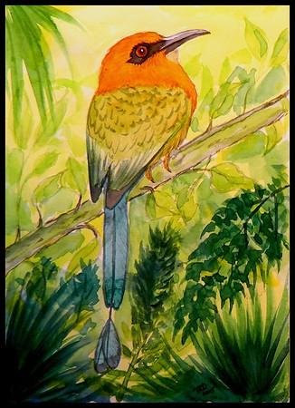 1-Broad-billed Motmot - Panama. 6x8.5, watercolor, dec 4, 2015.