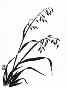 wild grasses-print