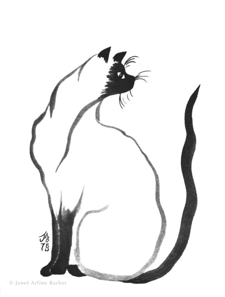 Cat-siamese-print