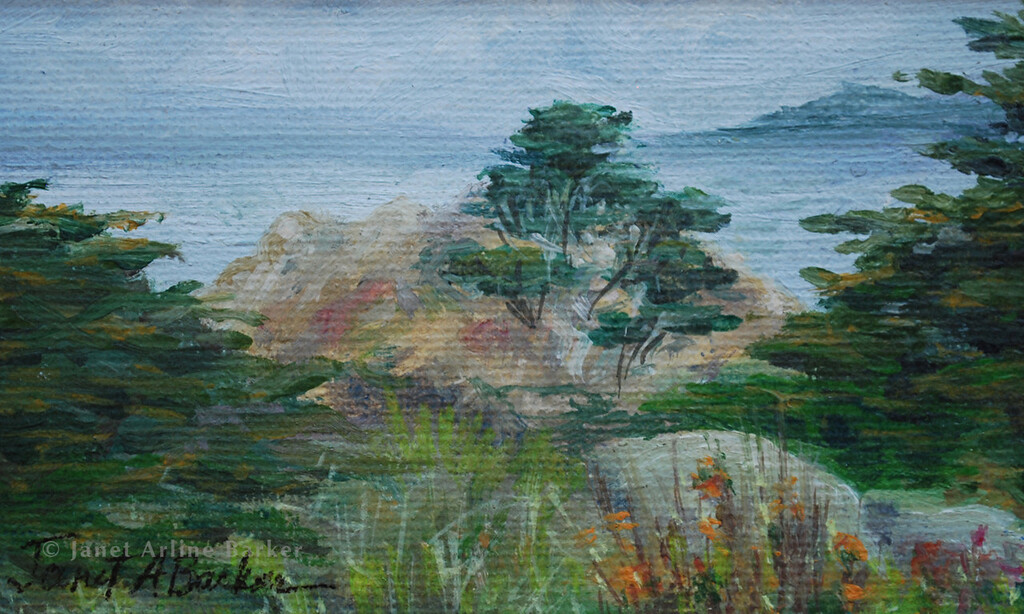 3x5 Cypress Walk canvas