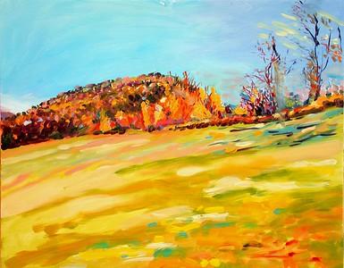 lancaster field fall 2000