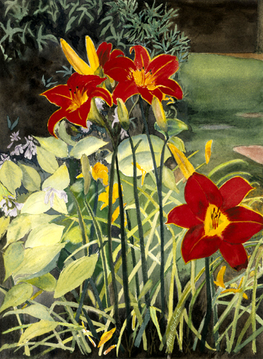 Helen's Garden - These beatiful lilies in my sister's garden were a joy to paint.