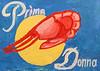 Prima Donna Shrimp