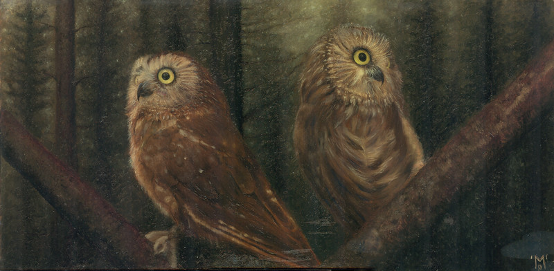"""""""(The Beginning of) The Nightwatch"""" - An original oil painting of two Saw-Whet Owls named Hamlet and Nod."""