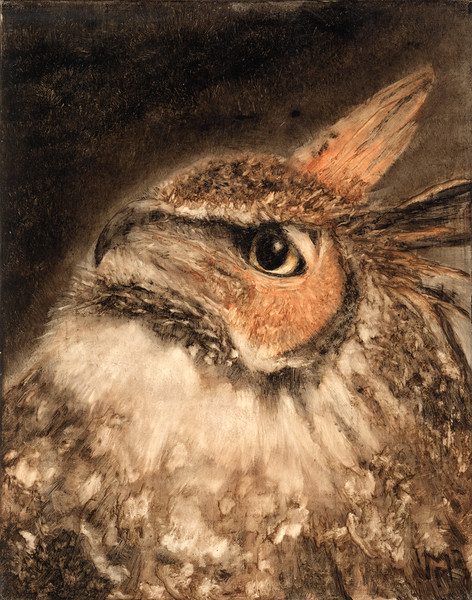 """""""The Horned King"""" (Underpainting Series) - A portrait of a Great Horned Owl."""