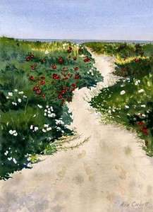 Pathway to the Beach - This painting is on the cover of a                         Cookbook that was recently published