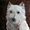 An oil painting of a West Highland Terrier named TJ.