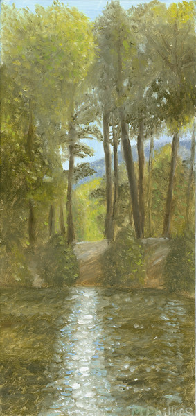 An original oil painting of Lake Tomahawk in Black Mountain, NC