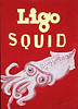 Ligo Squid