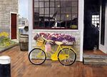 Nantucket Shopping - What could be nicer than riding your bicycle to shop at the little stores on Nantucket Harbor?