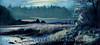 Tenants Harbor Night 10x20 copy