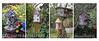 Birdhouses Quad Summer 10x20 copy