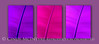 Banana Leaf in Purple 10x20 copy