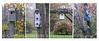 Birdhouses Quad Autumn 10x20 copy
