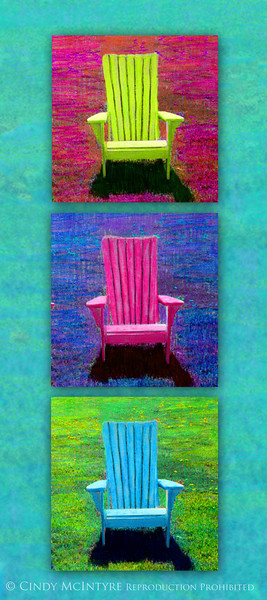 3 Adirondacks V 10x20 copy