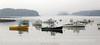 Cutler Harbor DBWC 10x20 copy