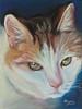 """Marfmalade"" Original Pastel on Sanded Paper - Los Alamos Demo- NFS"