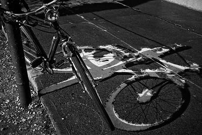 White Shadow, 1974
