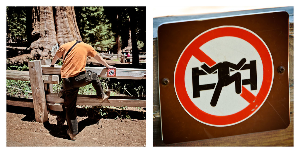 Sometimes National Parks have the funniest signs... made funnier by vandals. Apparently, crossing the fence without your head is prohibited. This was at the General Sherman Giant Sequoia tree,