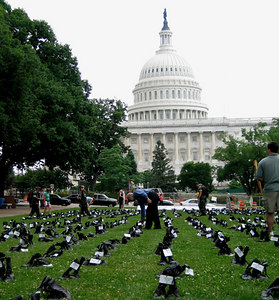 "Andrea Scharnau ""Eyes Wide Open: The Human Cost of War"" May, 2004; Upper Senate Park DC Scroll"