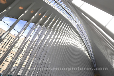 Oculus-NYC