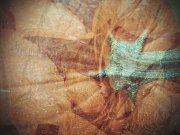 """Pumpkin Haze""<br /> <br /> Created with 3 photos -  a pumpkin, leaves, and tree bark."