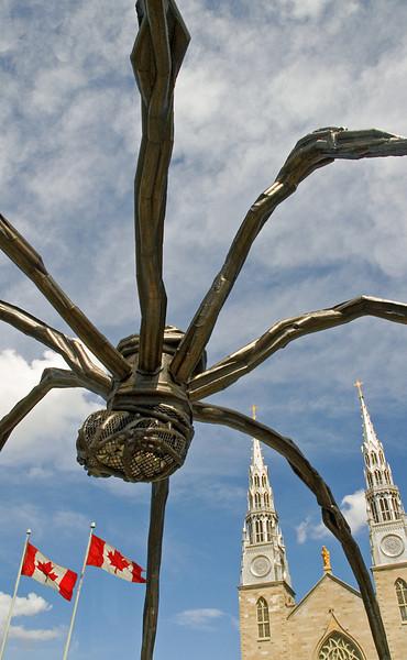 The Spider Takes Ottawa (original photo)
