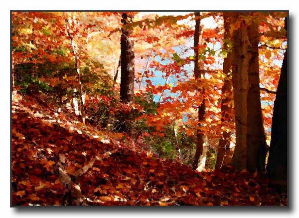 Autumn Leaves (40879952)