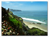 Crystal Cove State Park CA (40695586)
