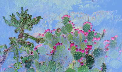 A reversal of light and shadow turns this prickly pear and cholla cactus scene into a painterly one.