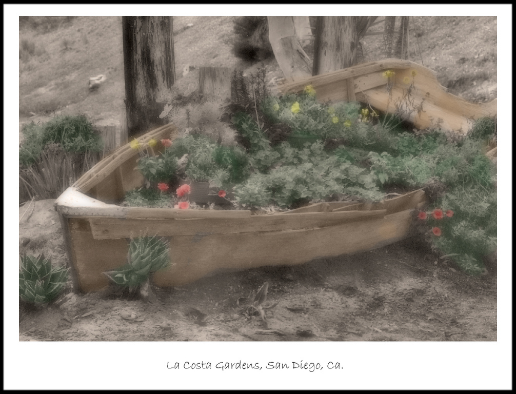 La Costa Gardens, Leucadia, Ca.