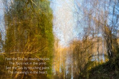 Poem 'Feel the Tao', 1983 Photographs, Leica Q2, 2020