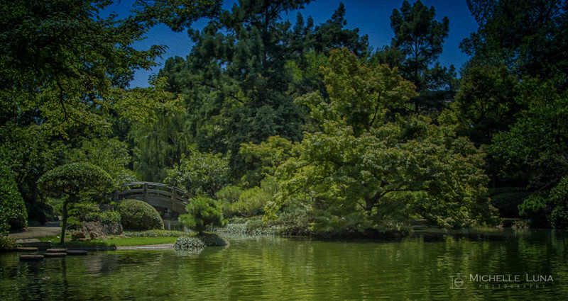 Summer day at Japanese Gardens, Fort Worth, TX