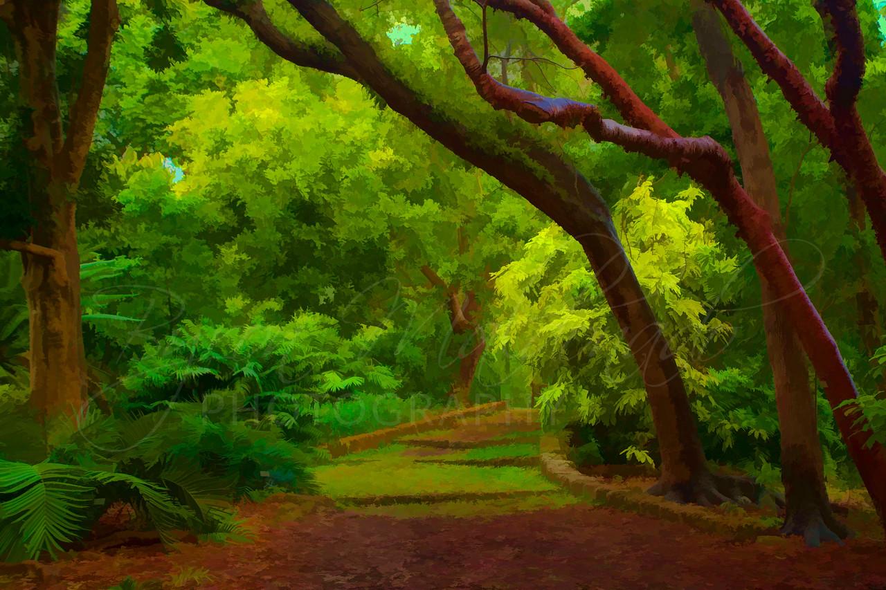 Fairchild Tropical Garden, Miami Florida.