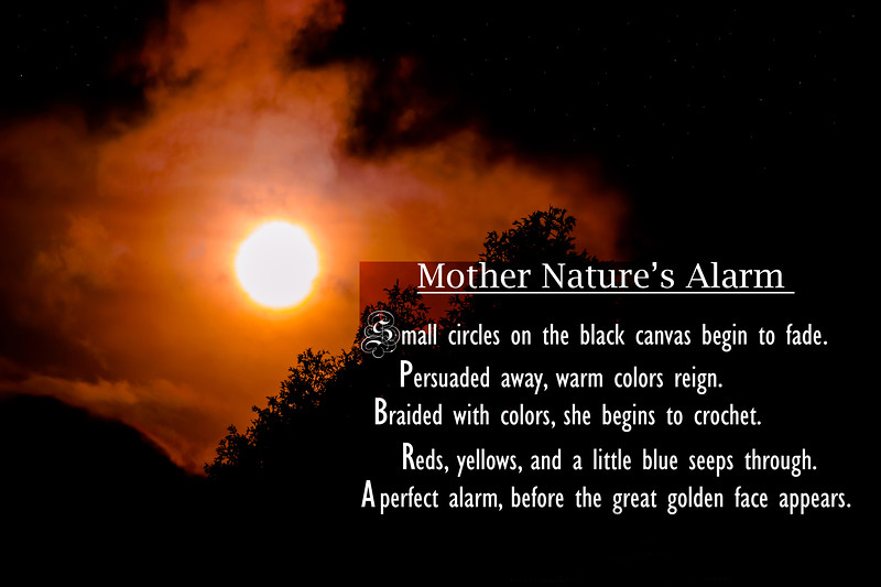 Mother Nature's Alarm