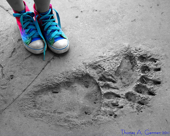 My daughter with polar bear footprints at the Baltimore Zoo.
