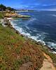 The coast at Santa Cruz, CA.