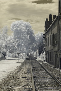 Spring Street railroad crossing.  Infrared = amazing textures.
