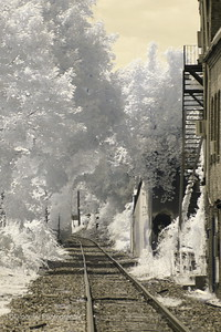 Spring Street railroad crossing, Stafford Springs.  Love this one - check out the graffiti man peeking out from the bushes on the right!  ;)