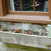 THE OLD WINDOW BOX