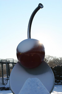 IMG_2617   The cold sun peeking around the Cherry