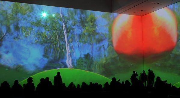 Pipilotti Rist, MOMA Feb 2009