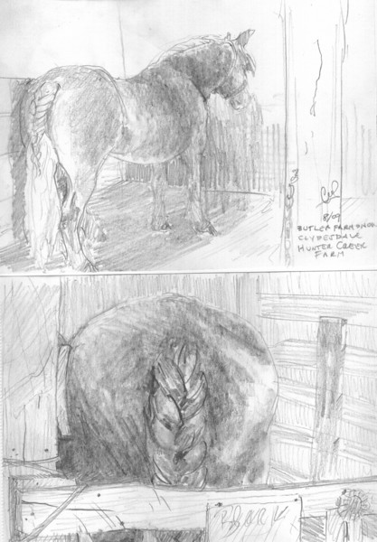 Butler Farm Show - Clydesdale<br /> <br /> It was during a downpour of rain, that I got a chance to spend some time sketching this beautiful horse. <br /> <br /> The barn was exceptionally hot, there were a lot of people crowded around trying to escape the weather, along with myself and several other artists. <br /> <br /> I was fortunate to capture several views of the Clydesdale along with talking with other horse lovers. <br /> <br /> Medium: Pencil on Paper