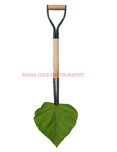 Green Jobs Shovel