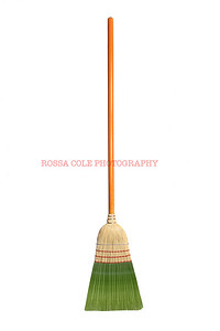 Green Jobs Broom
