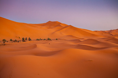 Oasis in the Moroccan Sahara.